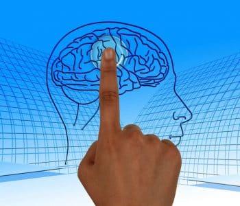 Intermittierendes fasten ist gesund fuers gehirn, ein finger zeigt auf ein Bild mit einem Gehirn