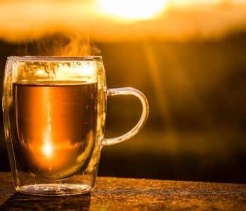 meine erfahrung mit tee fasten, Tasse Tee